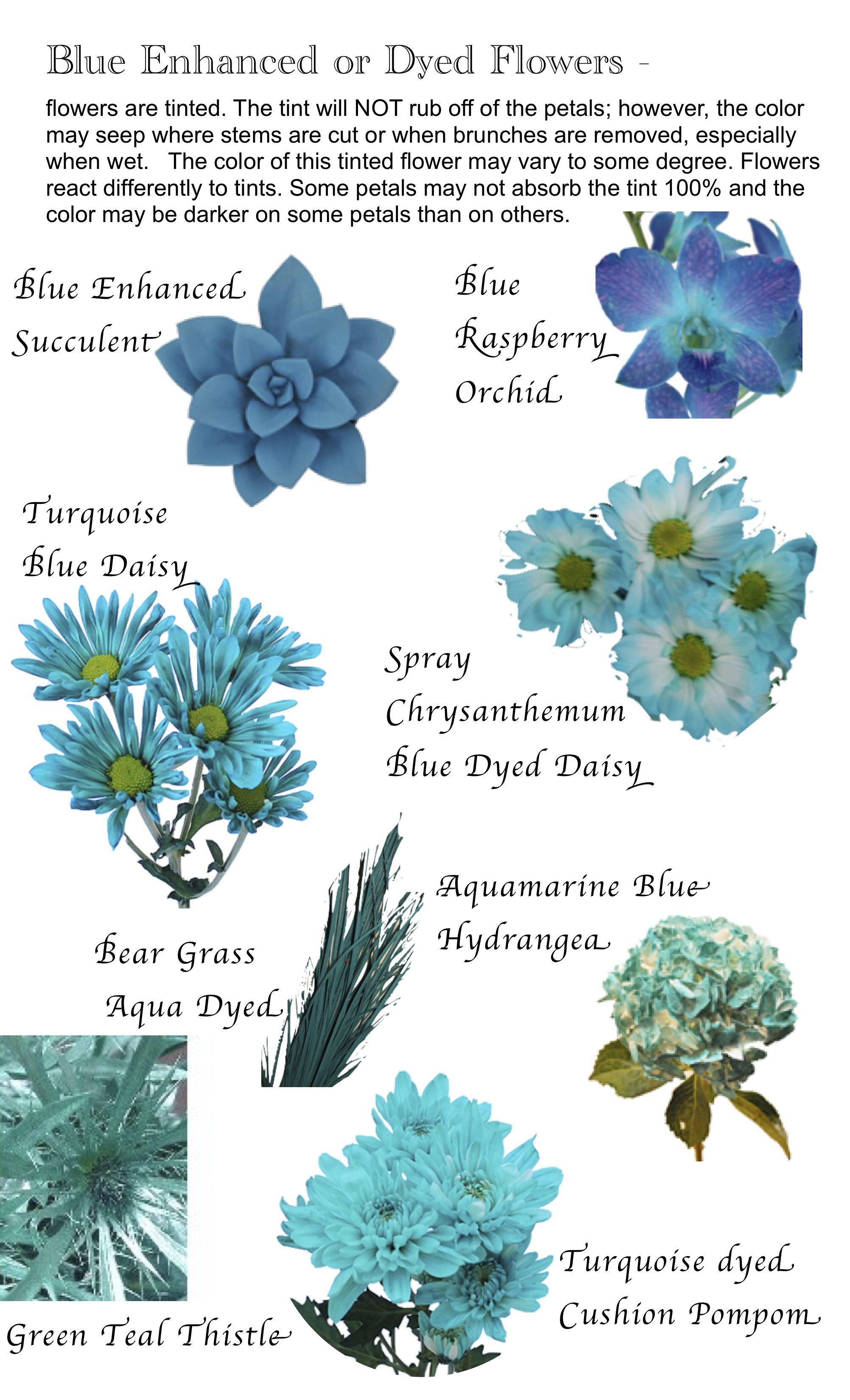Flower names by Color Flowers, Flower and Gardens