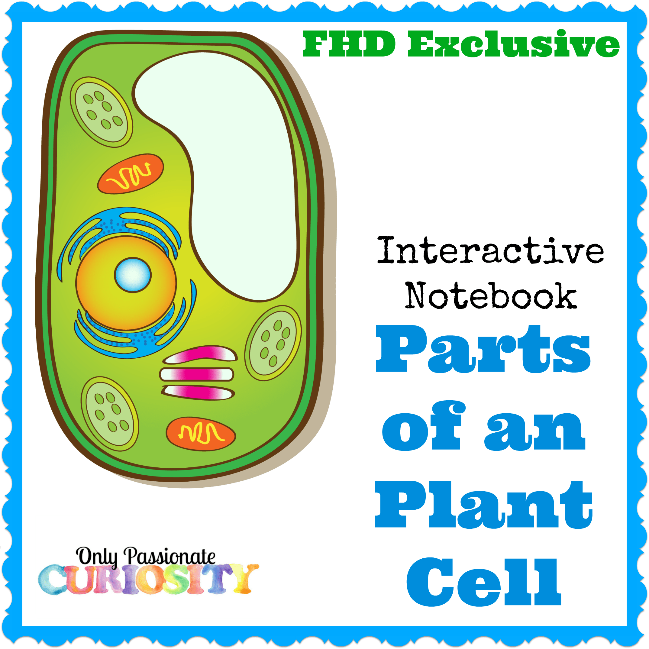 Free Plant Cell Interactive Notebook Instant Download