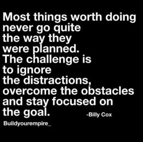Image result for focus on goals to overcome obstacles