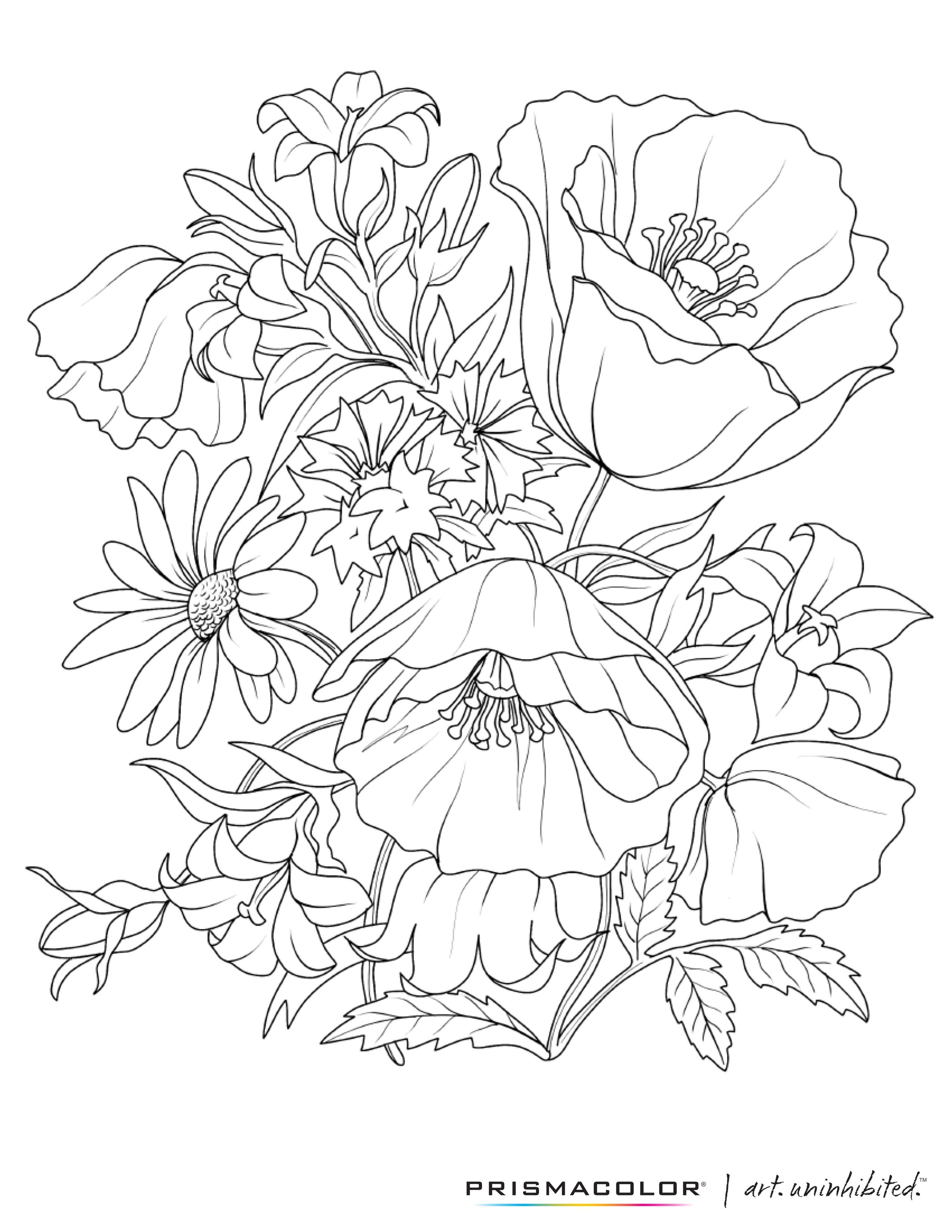 What a beautiful flower adult coloring page! Colouring