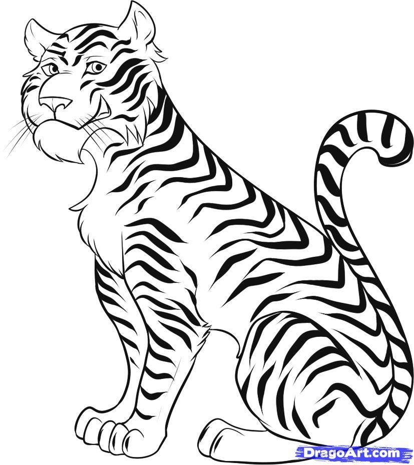 How to Draw a Cartoon Tiger, Step by Step, Rainforest