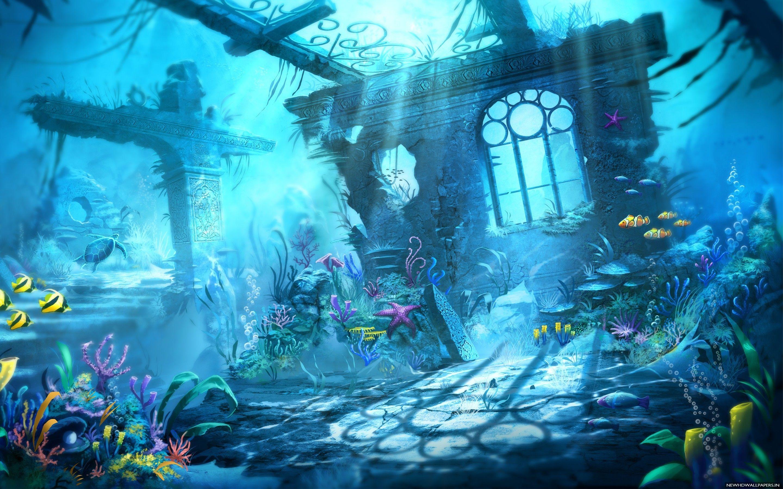 Trine Underwater Ocean Life Fish Photo New HD Wallpapers