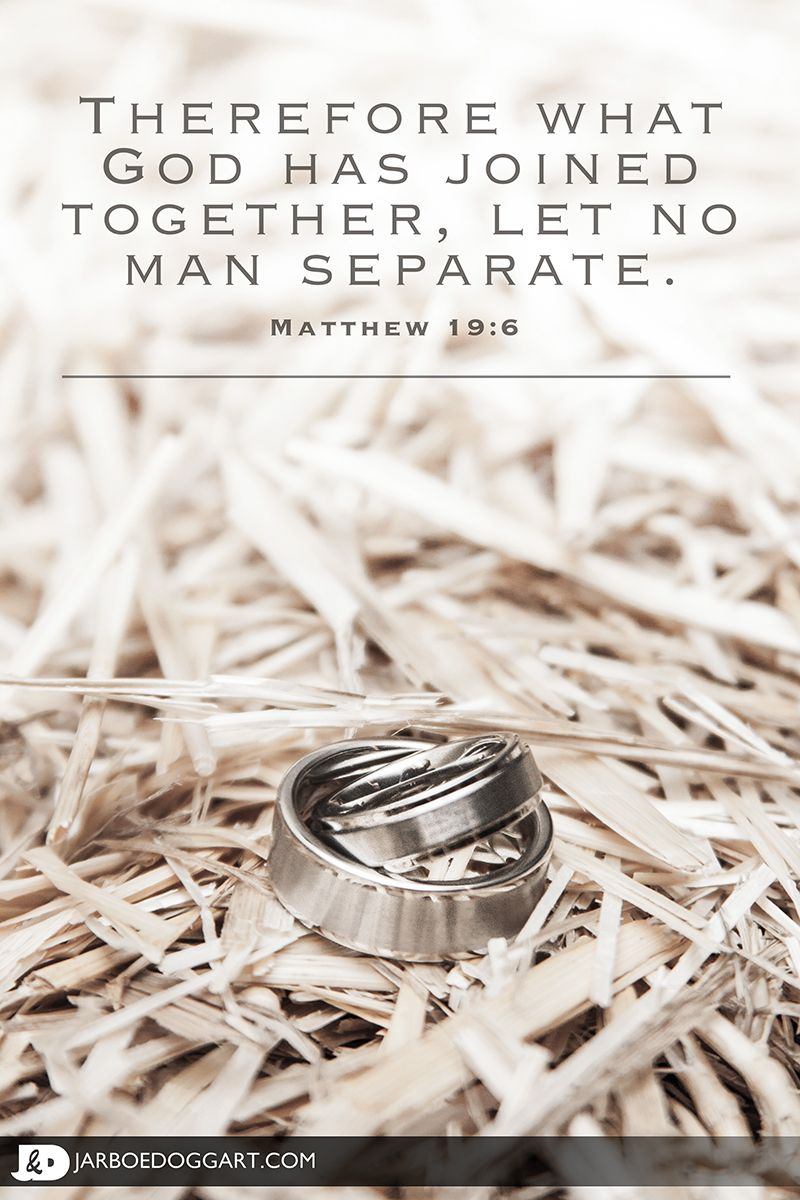 Beautiful picture of the bride and groom's wedding rings