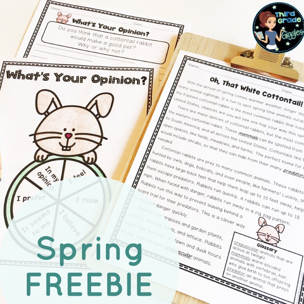 Welcome Spring In Your Classroom With This Freebie Complete With A Non Fiction Article Fact