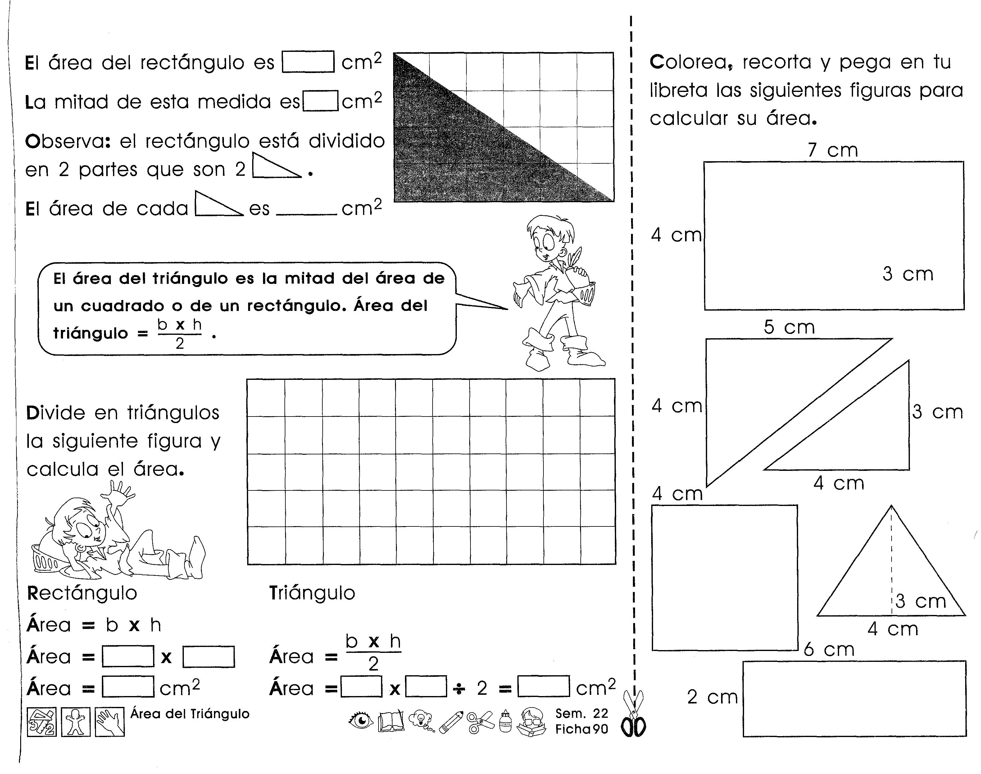 Area Del Triangulo El Area Del Triangulo Es La Mitad Del Area De Un Cuadrado O De Un Rectangulo