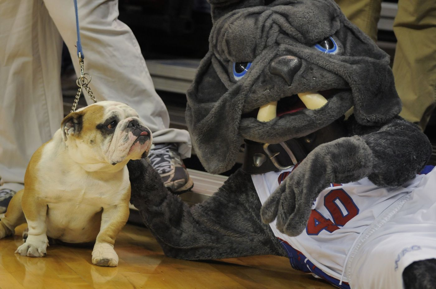 LA Tech mascot, Tech XX, with Champ Live Mascots