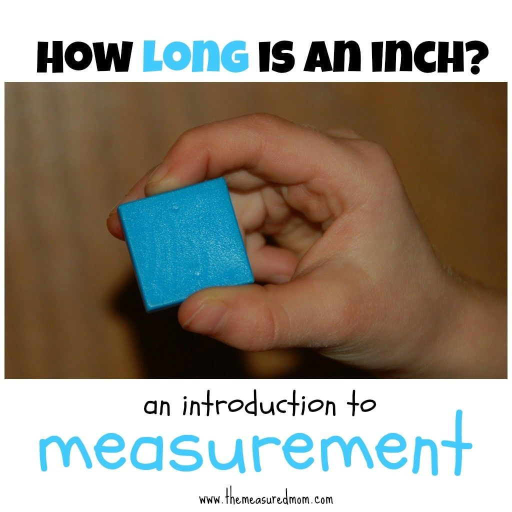 How Long Is An Inch An Introduction To Linear Measurement