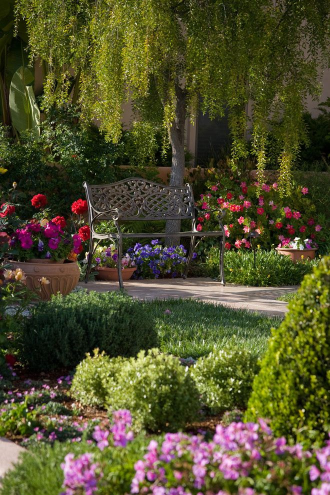 Garden Glory Spruce up Your Flower Bed with our Top 5
