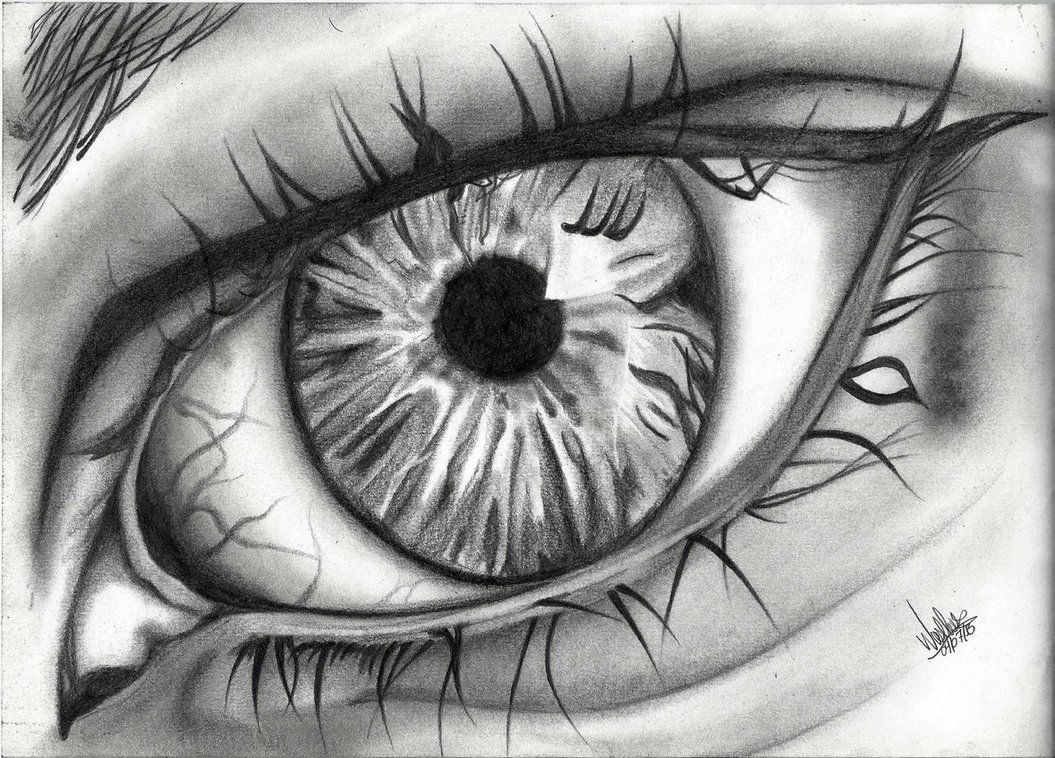 realistic eye drawings Google Search Drawings And Etc