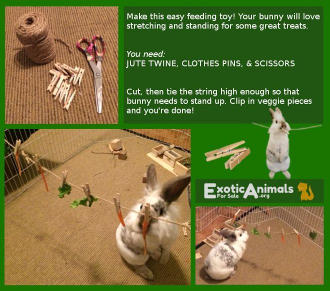 Bunny clothes line diy bunny rabbit toys that are cheap