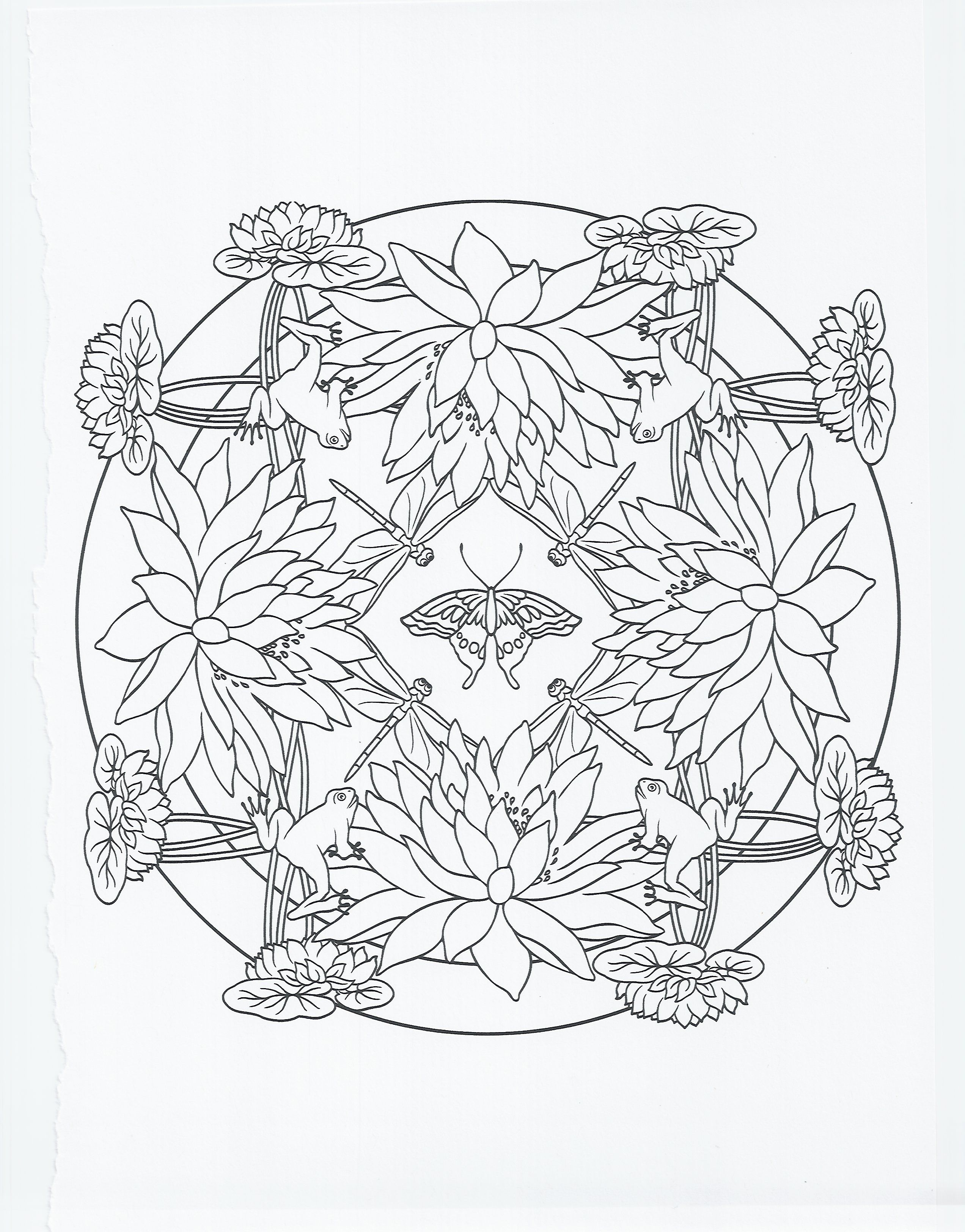 Frog Coloring Pages Colour me! Pinterest Frogs and