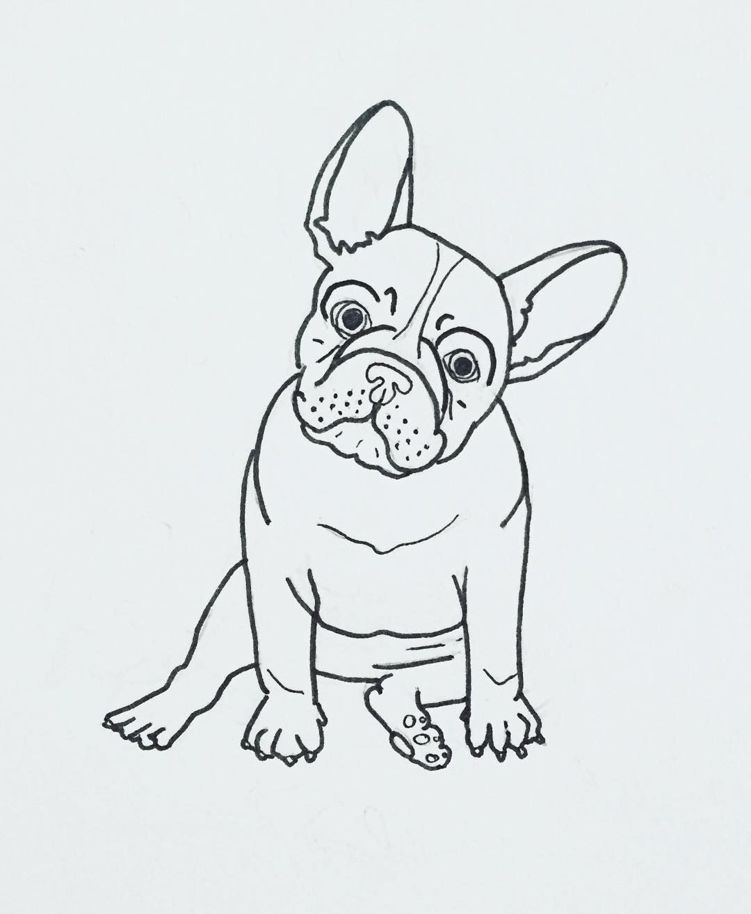 French Bulldog Frenchie Illustration By Thepapermama