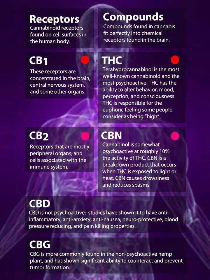 Interesting… While I am against the smoking of marijuana I