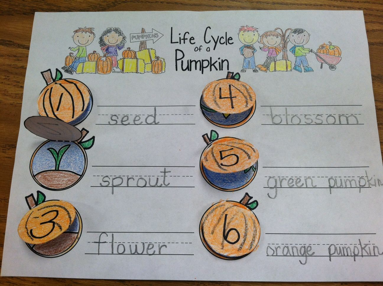 pumpkin books with sequencing together in a Pumpkin