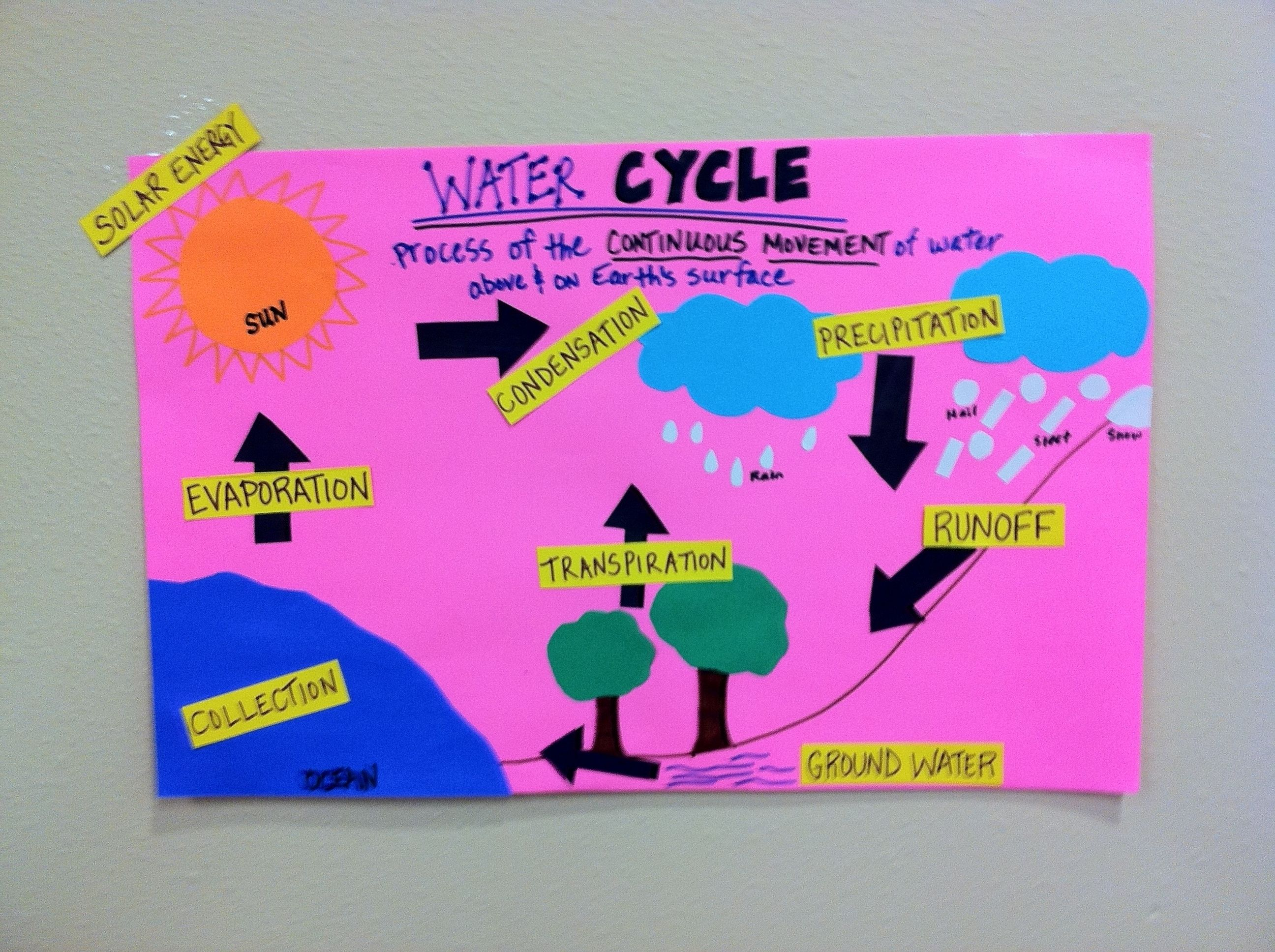 Interactive Word Wall With Water Cycle Steps Listed Another Example Of Word Wall From Sandra