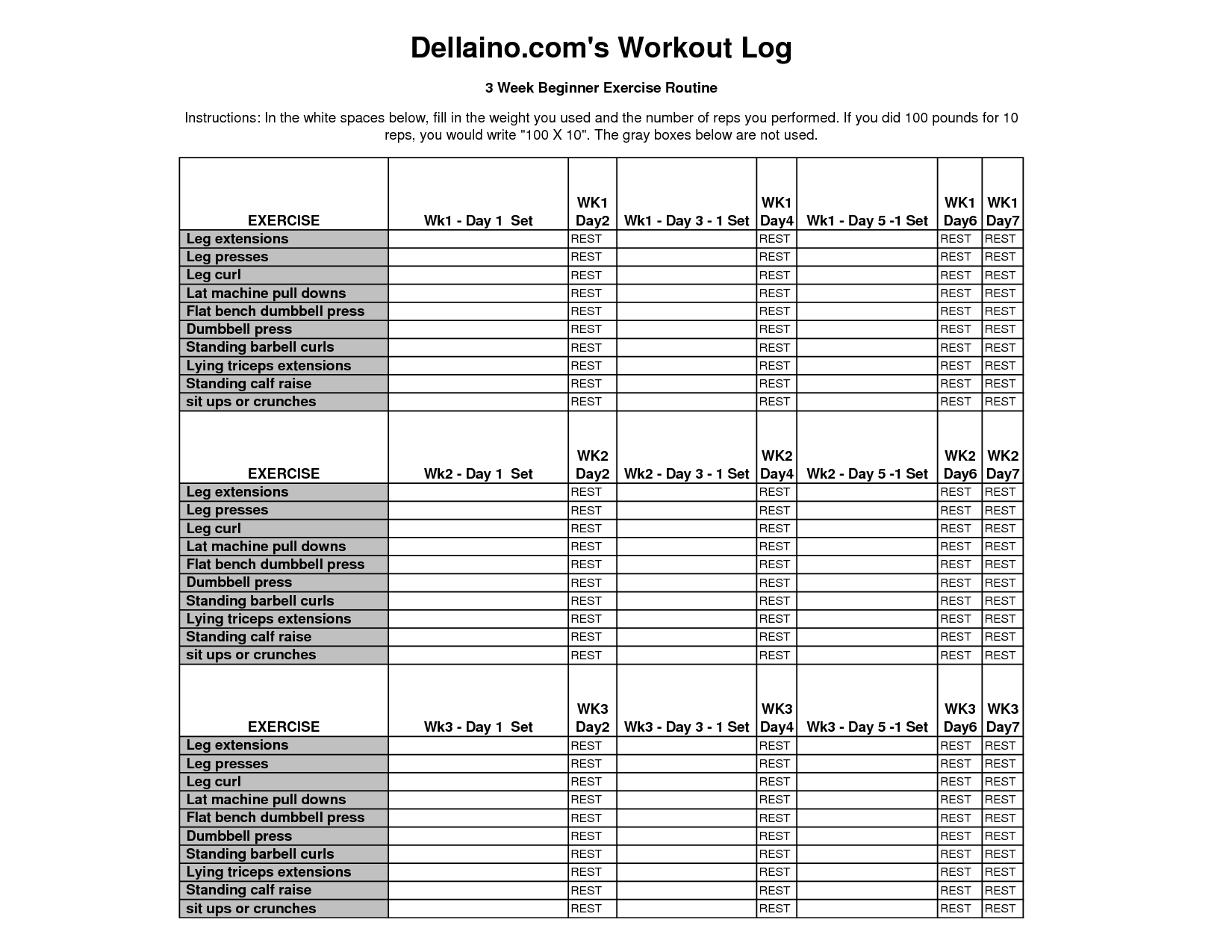 Fitness Workout Planet Fitness Workout Sheet