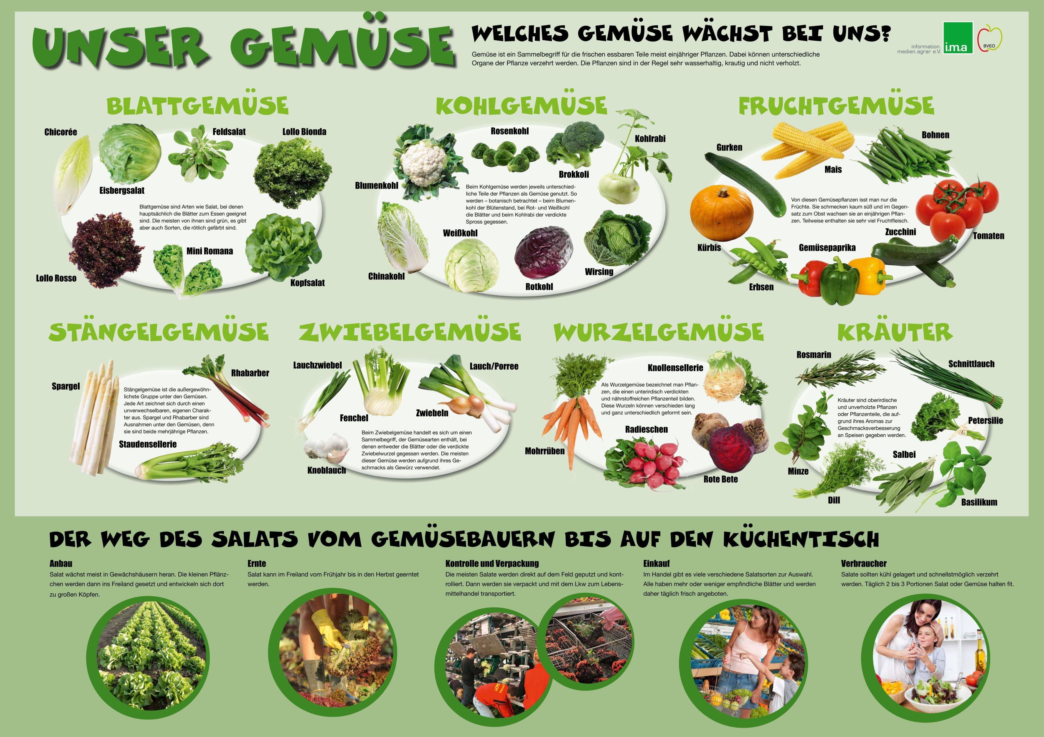 Obst Und Gemuse Saisonkalender
