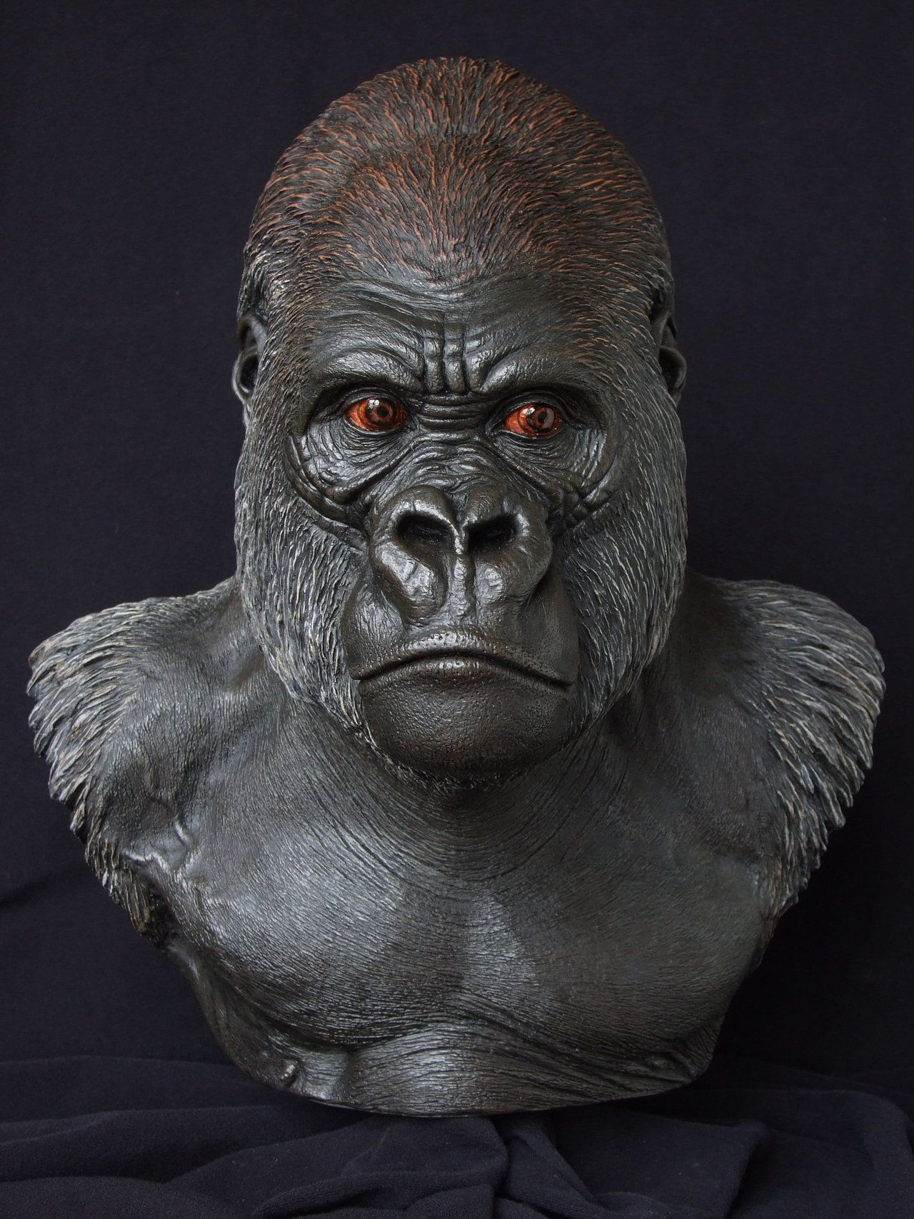 Lowland Gorilla front view by