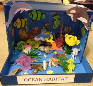 Image result for shoebox diorama habitat