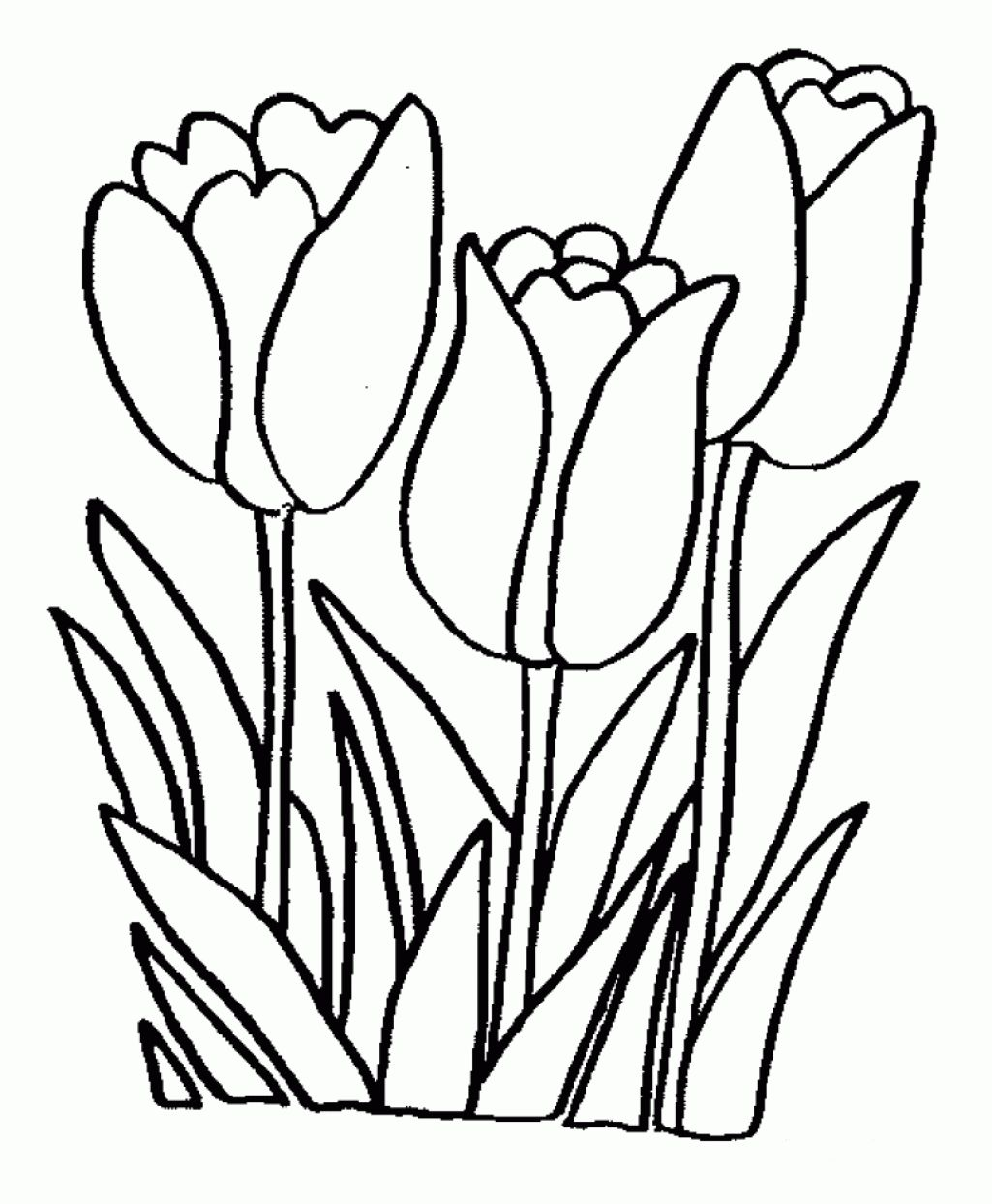 1000 images about coloring pages on pinterest free printable