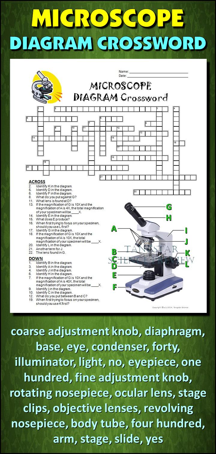 Microscope Crossword With Diagram Editable