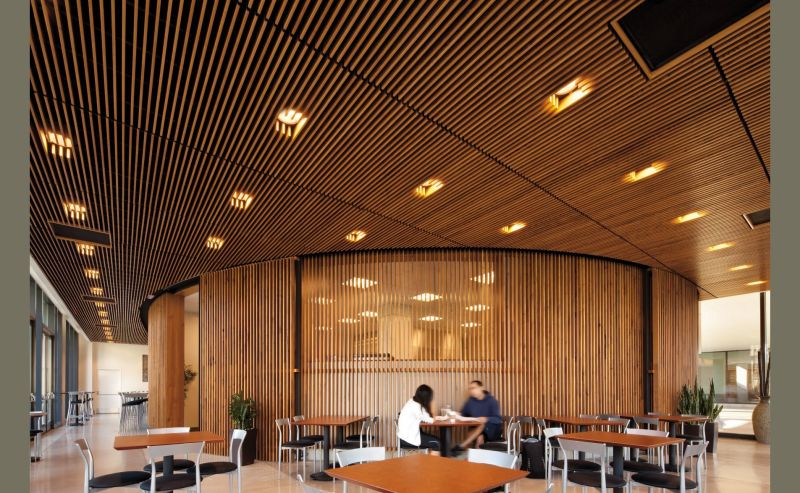 Commercial Ceiling And Wall Systems Idea Photo Gallery Interiors Ceilings