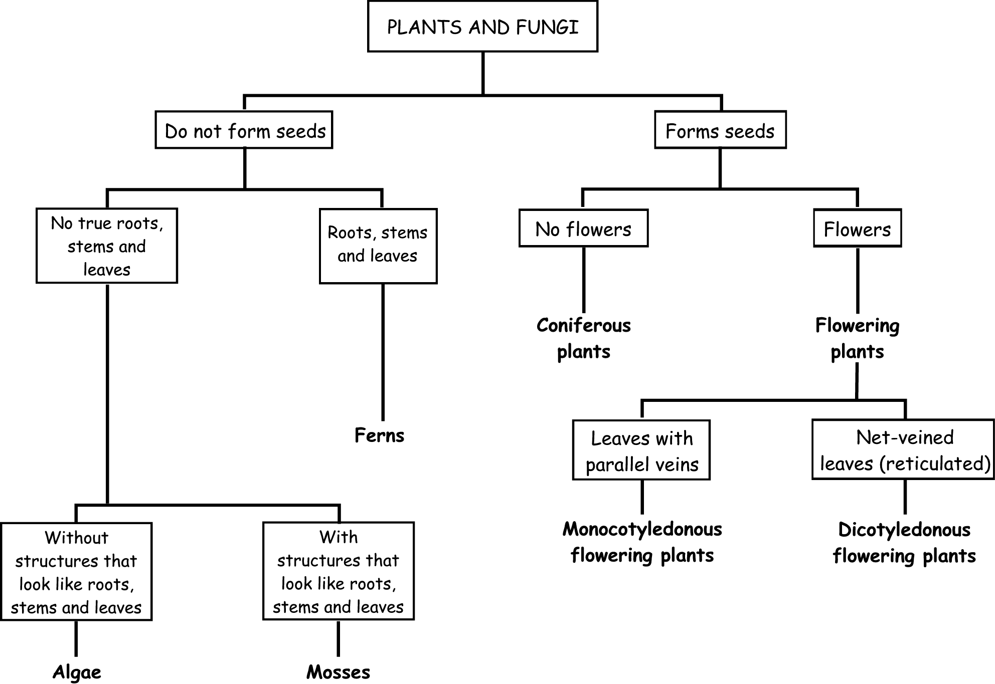 Plant Classification Worksheet Worksheets Tutsstar Thousands Of Printable Activities