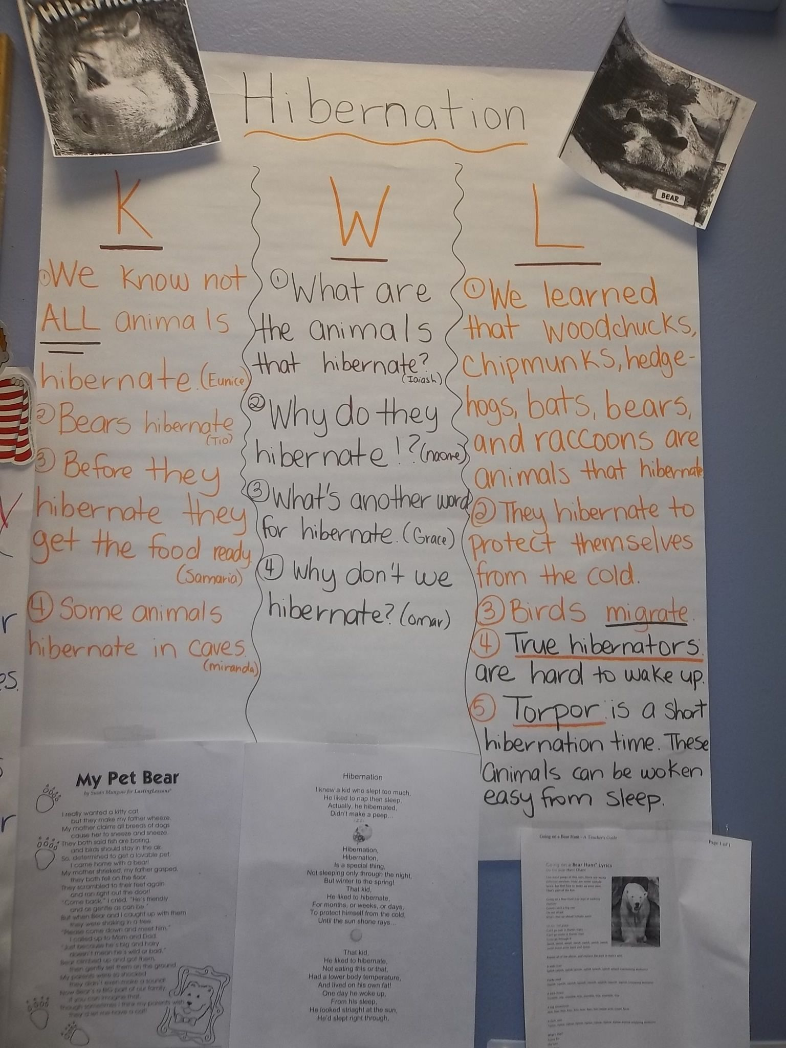 Hibernation K W L Chart With Hibernation Poem Attached