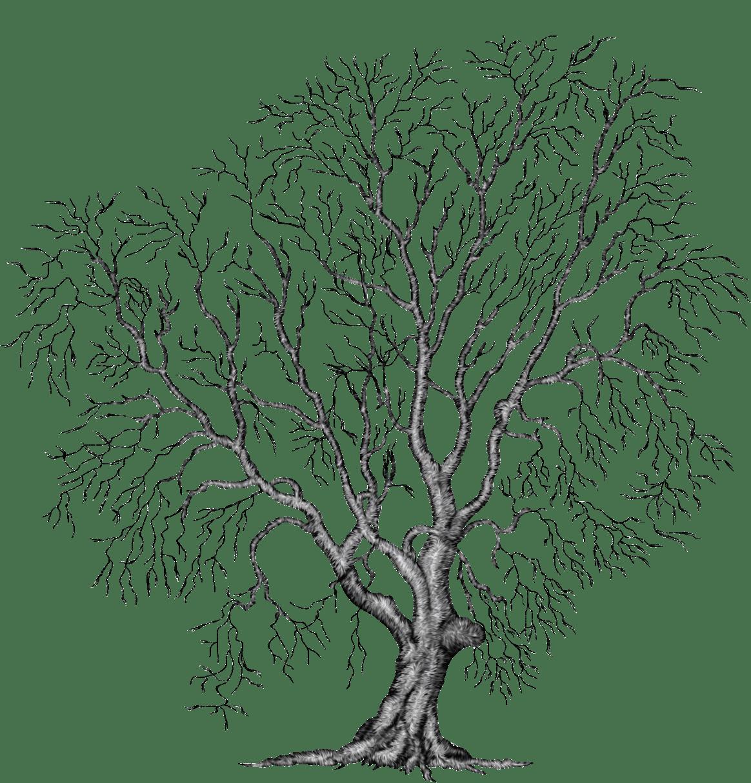 Painting Tree Clipart Illustration File