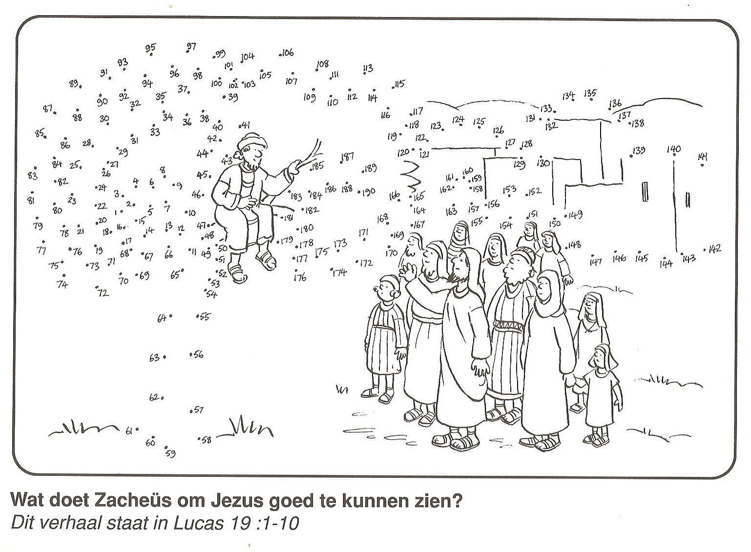 Zacheus In De Boom Om Jezus Goed Te Kunnen Zien Van Stip