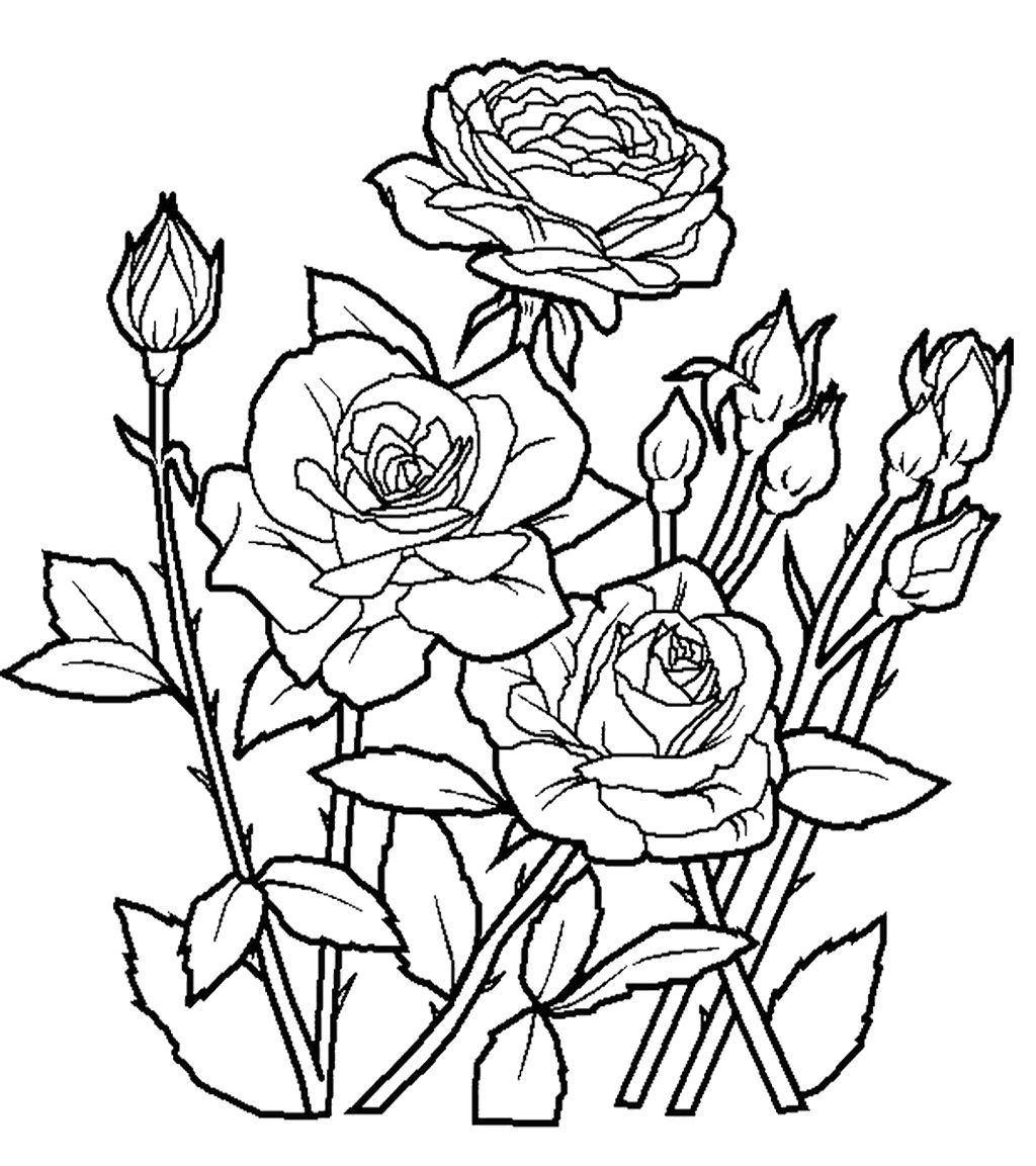 Flower Coloring Worksheet