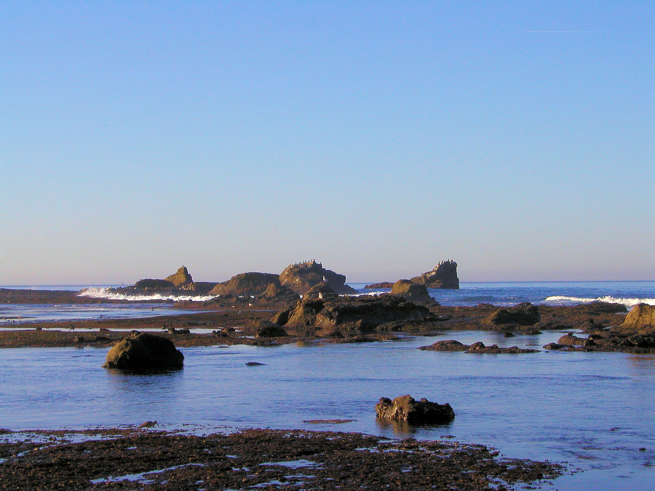 Sail rock at Mavericks beach, Princeton Favorite Places