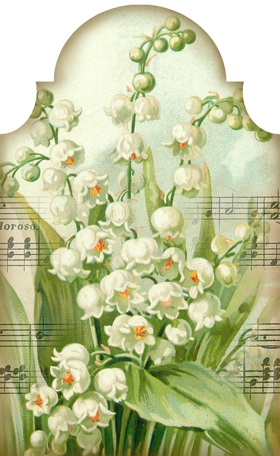 """""""Sweetest of the Flowers"""" lily of the valley and music"""
