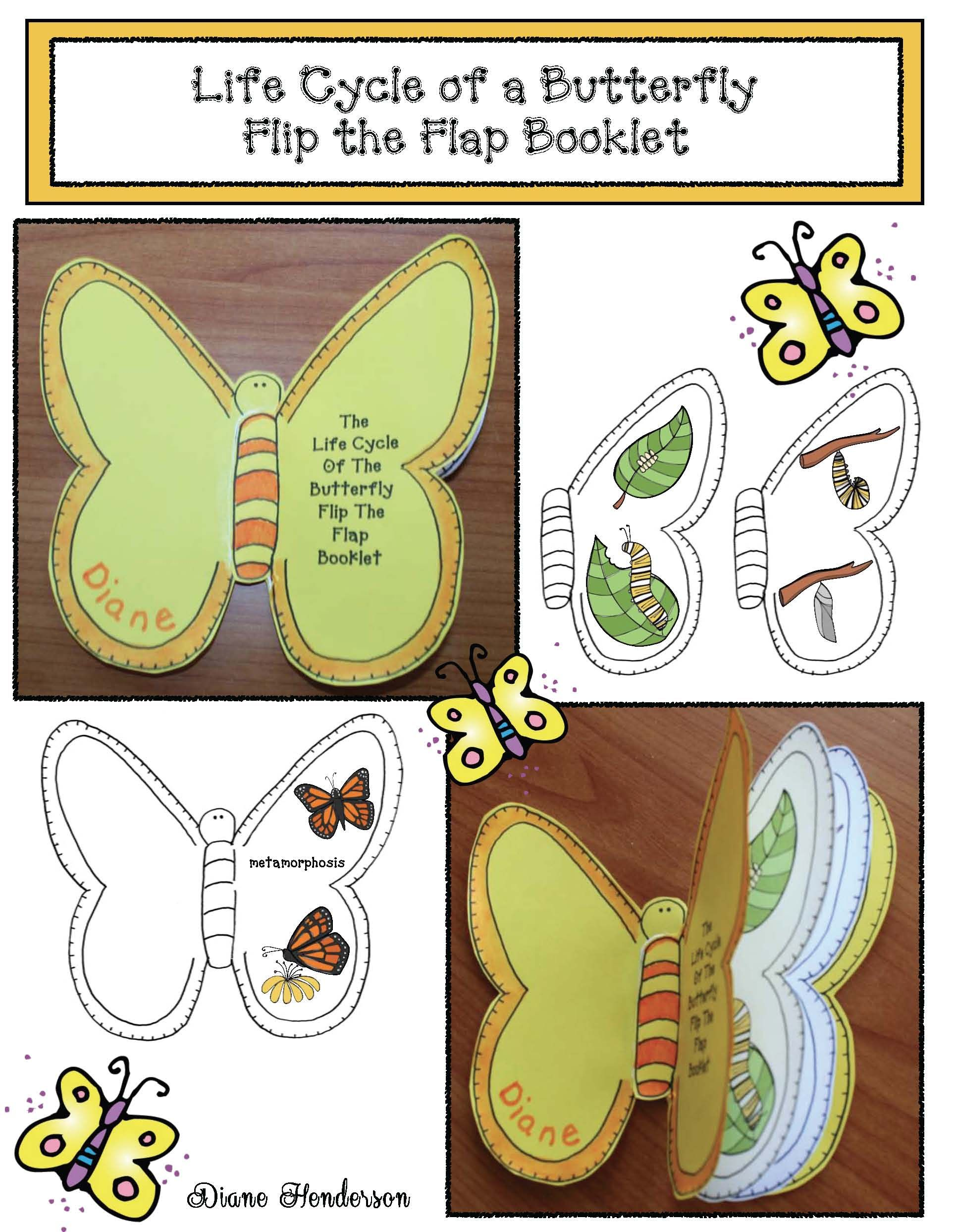 Life Cycle Of A Butterfly Activities Life Cycle Of A Butterfly Crafts The Very Hungry