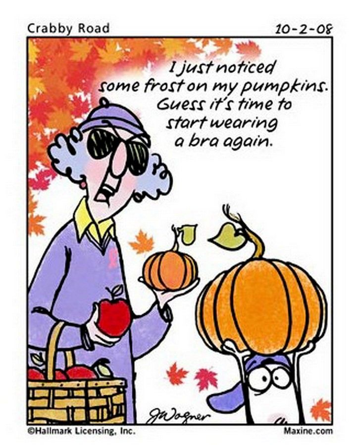 New Maxine Humor Here's a blast of Maxine cartoons that