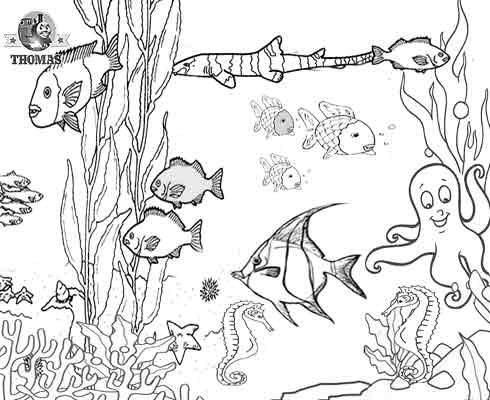 1000 images about fish tank drawings on pinterest tropical fish