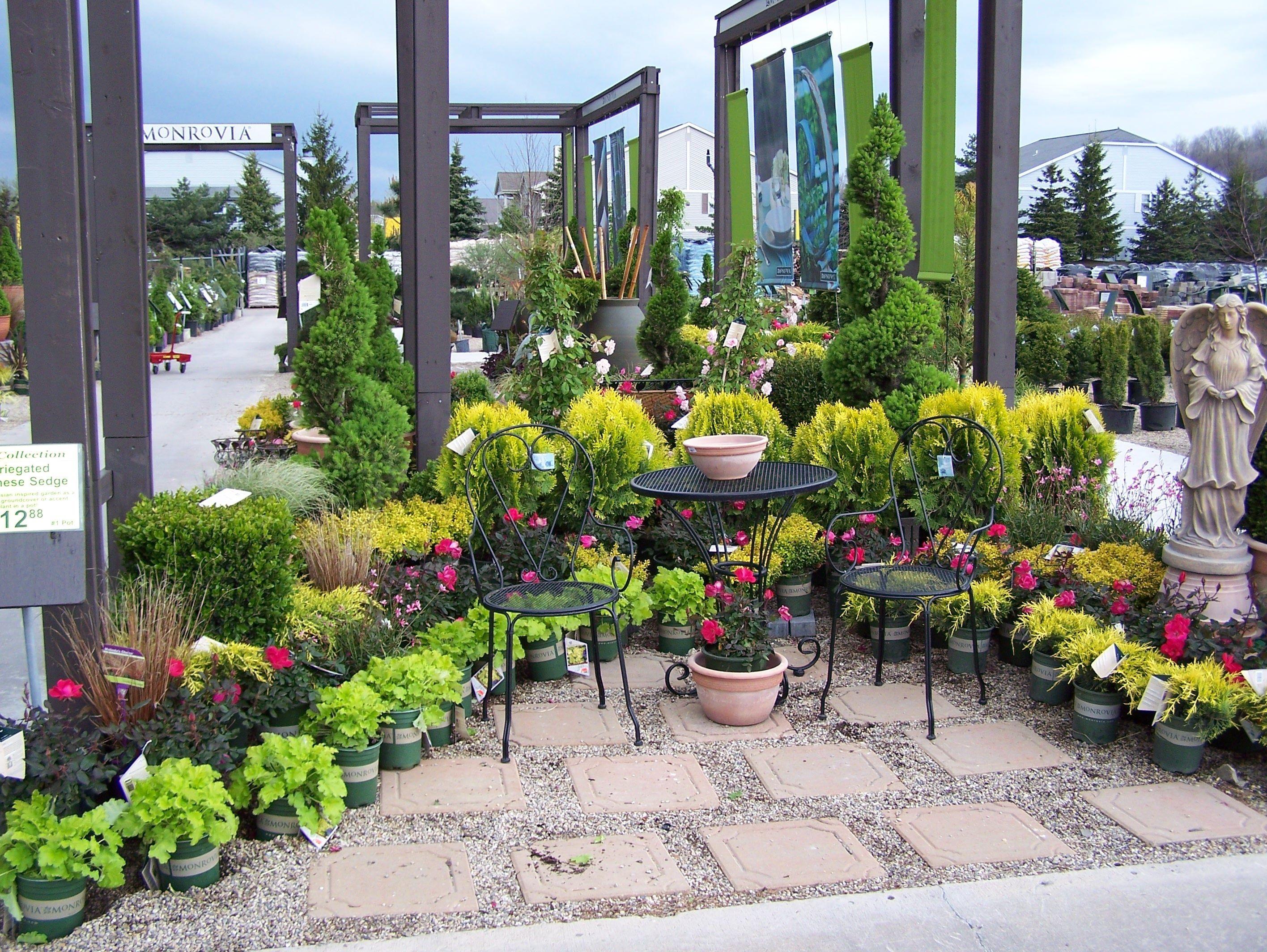 Monrovia country garden Garden Center Pinterest