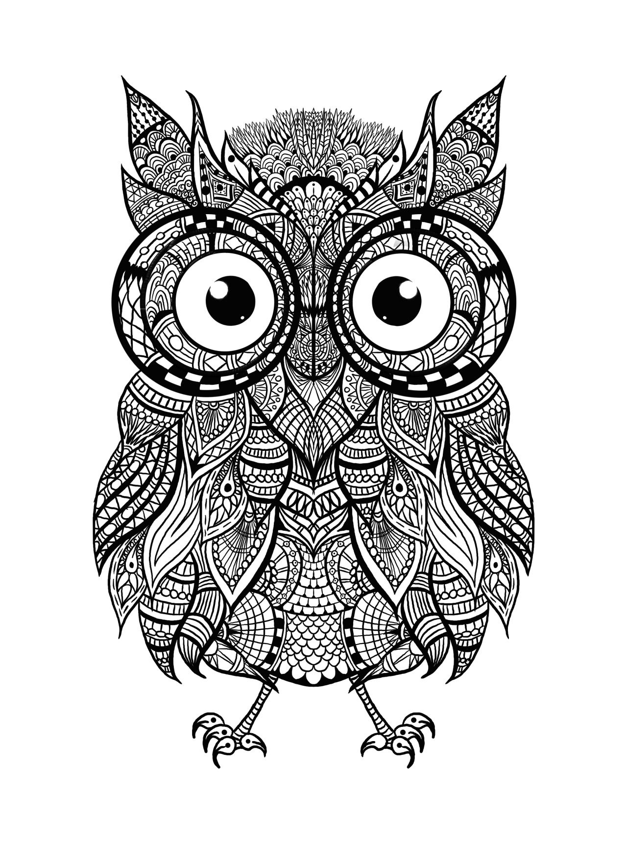 Hey everyone! Check out this awesome intricate owl for