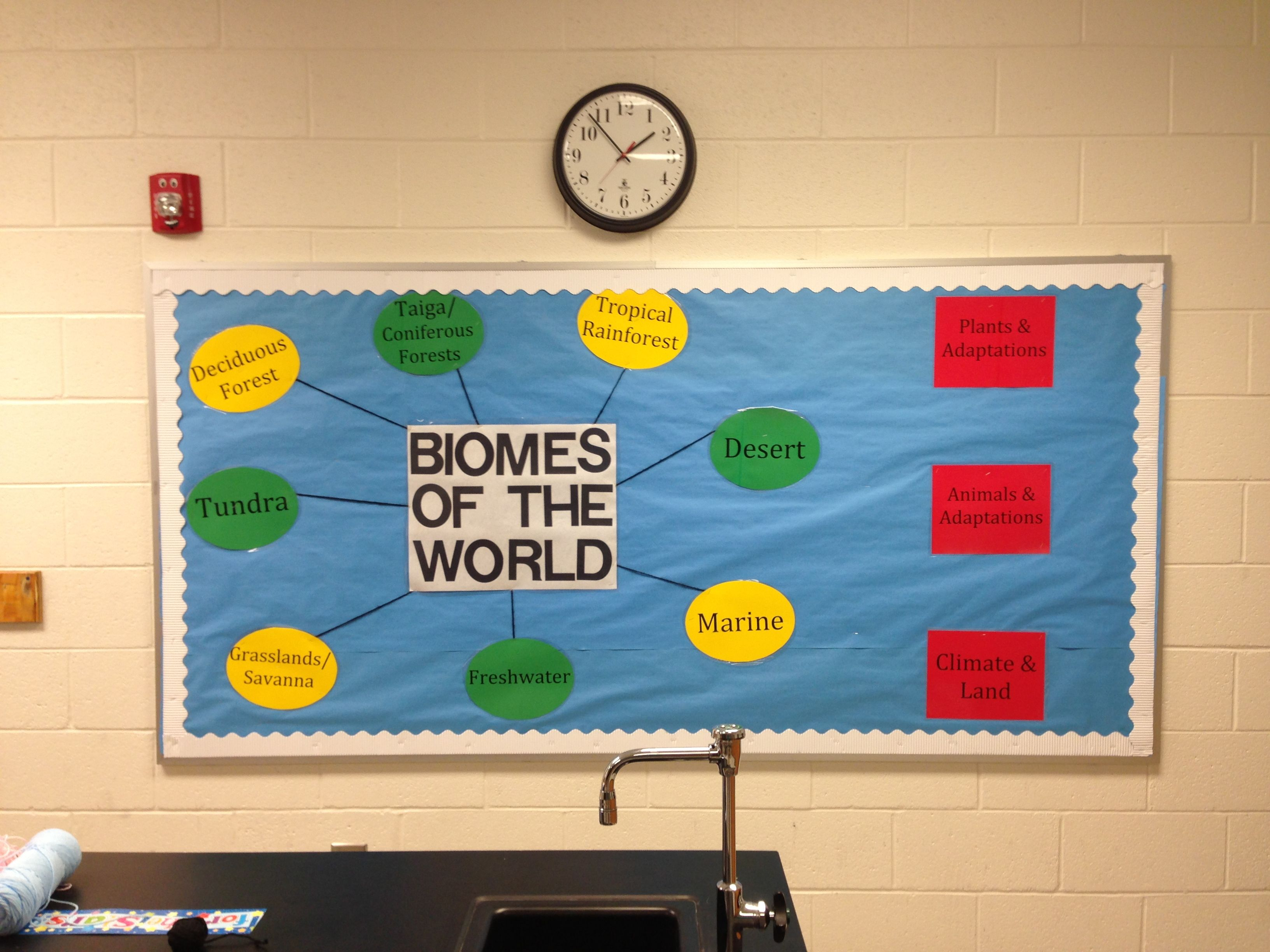 Biomes Of The World Science Interactive Bulletin Board