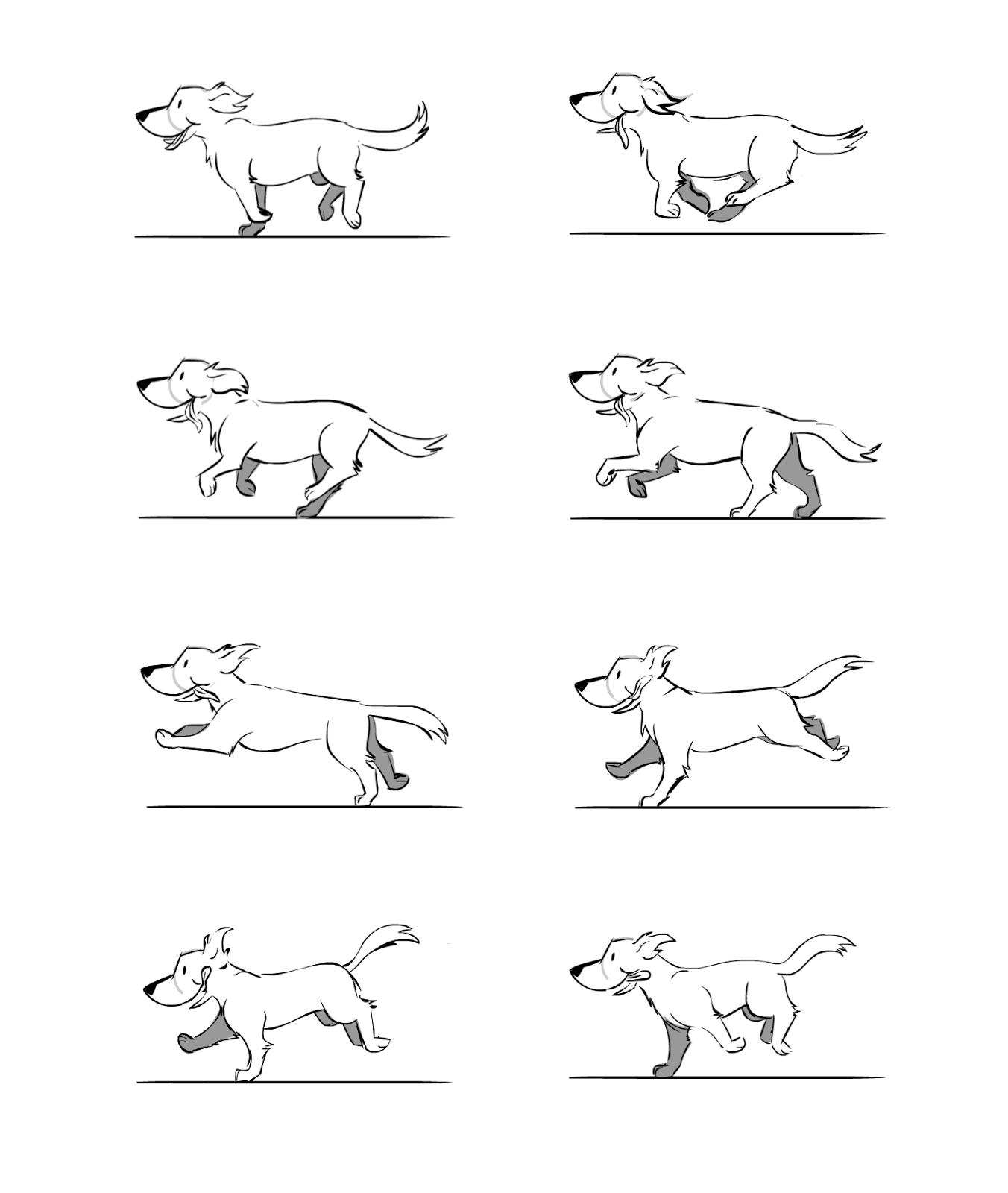 Dog Running Cycle