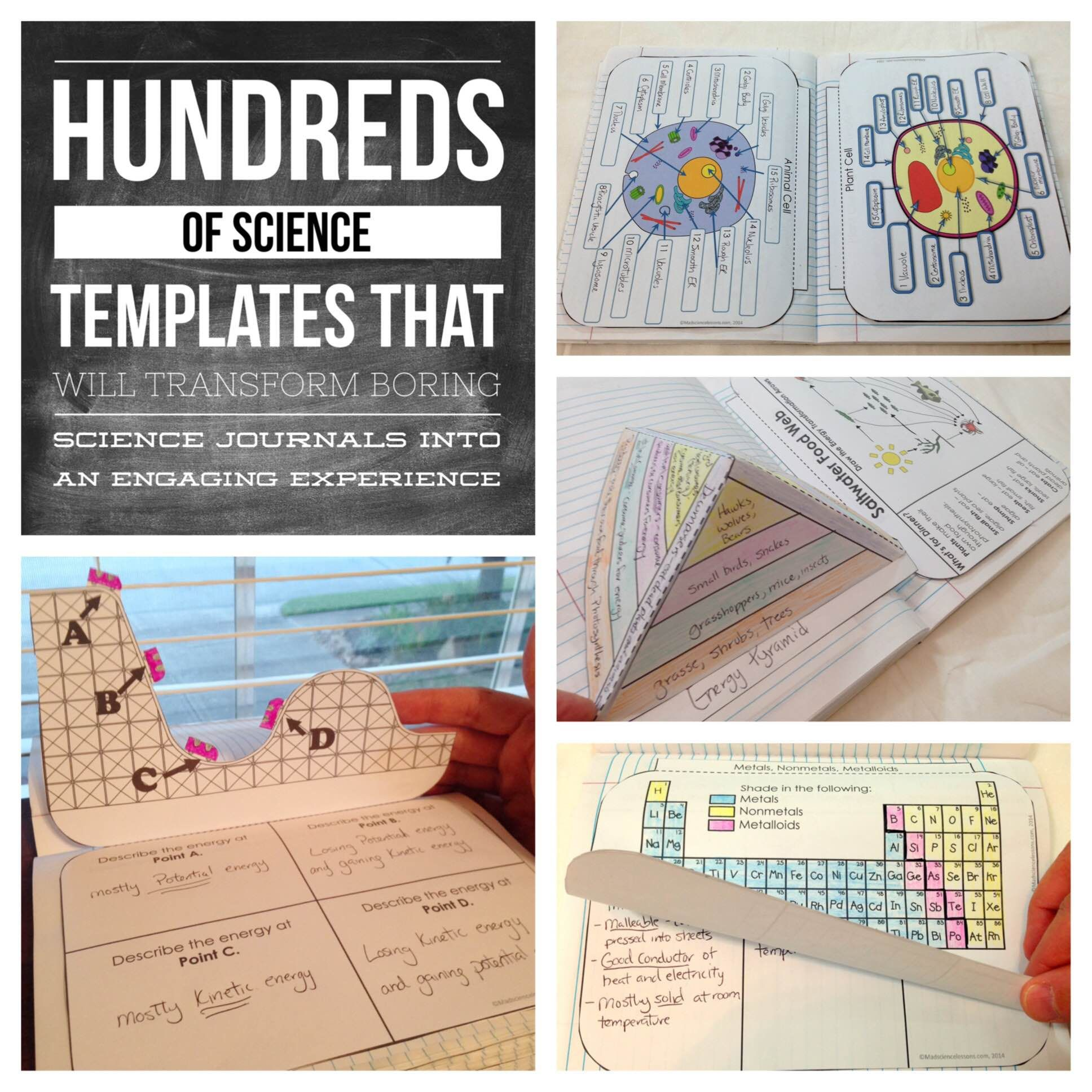 Science Interactive Notebooks Bundle