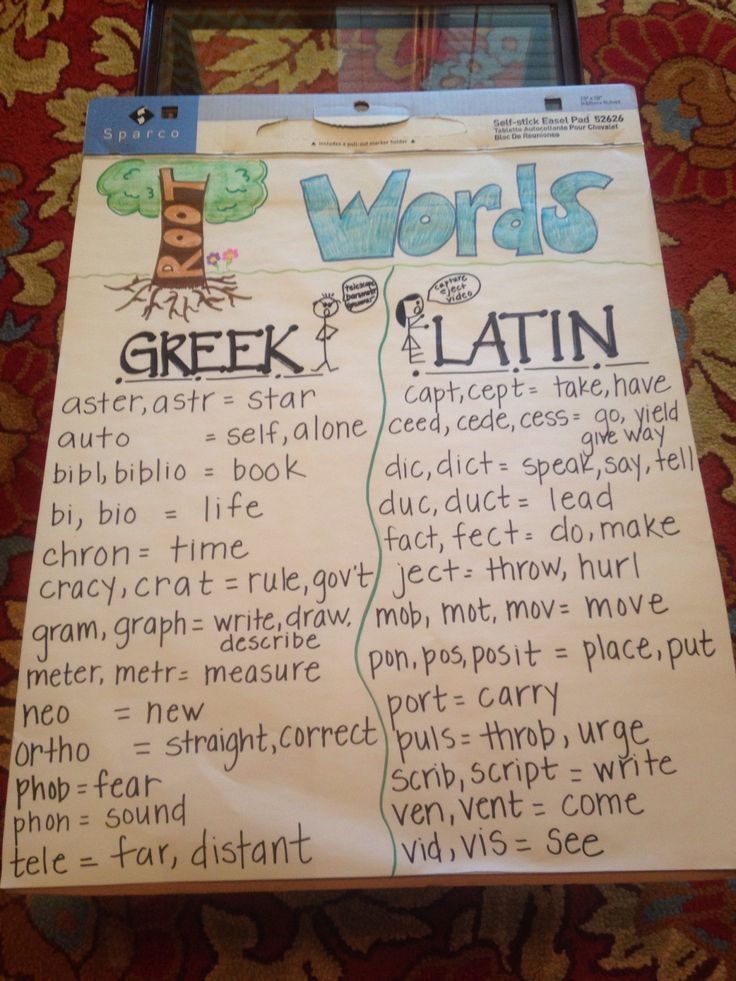 Root words anchor chart for Greek and Latin 4th Grade