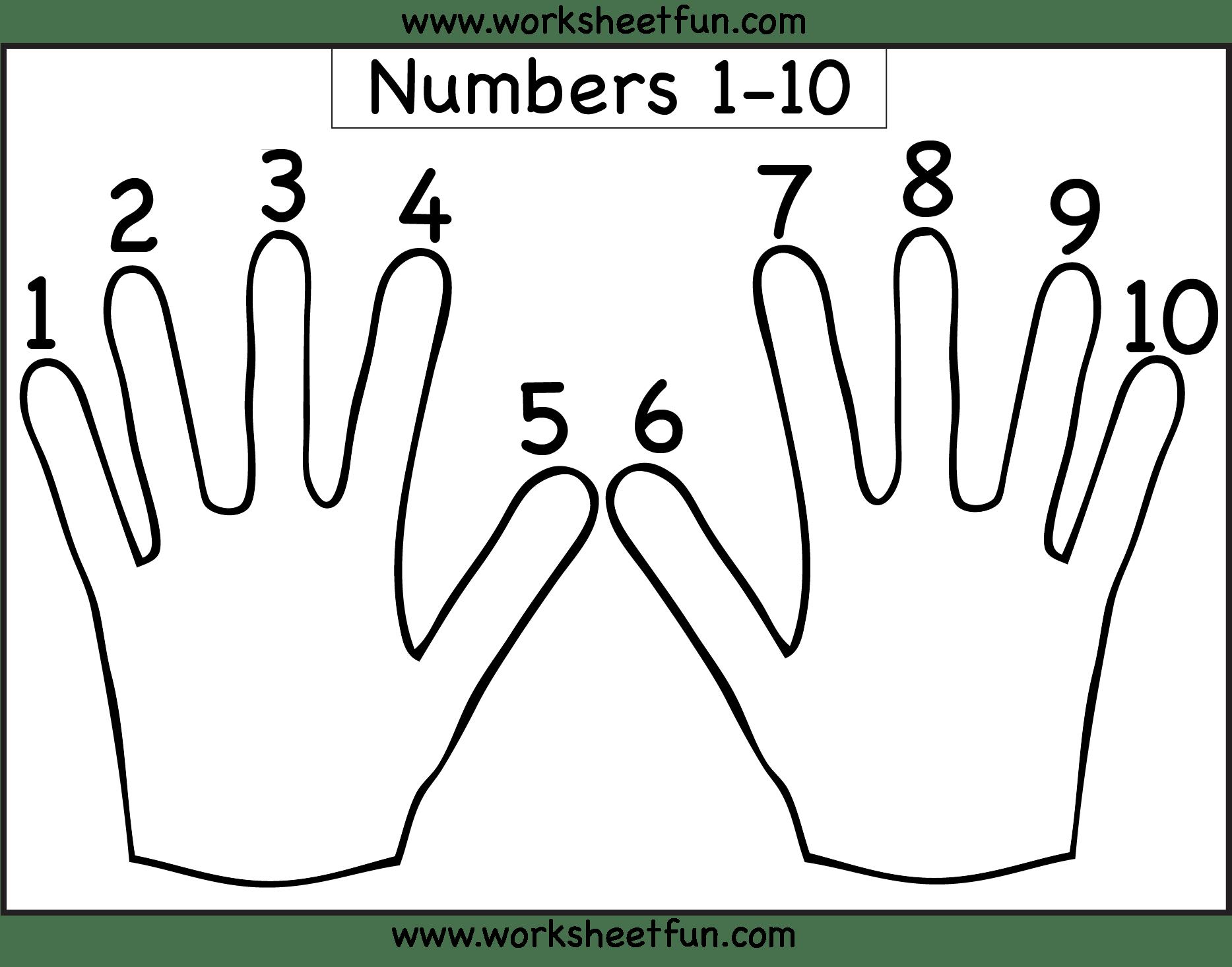 Hand Worksheet