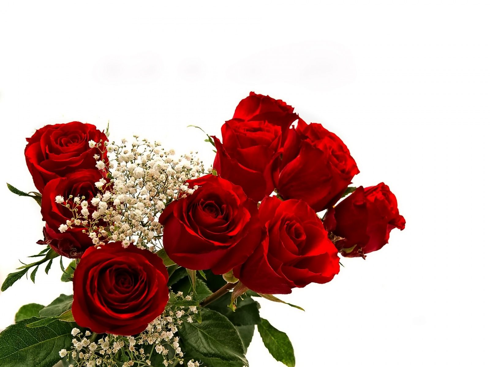 most beautiful roses and bouquet Beautiful Rose Flowers