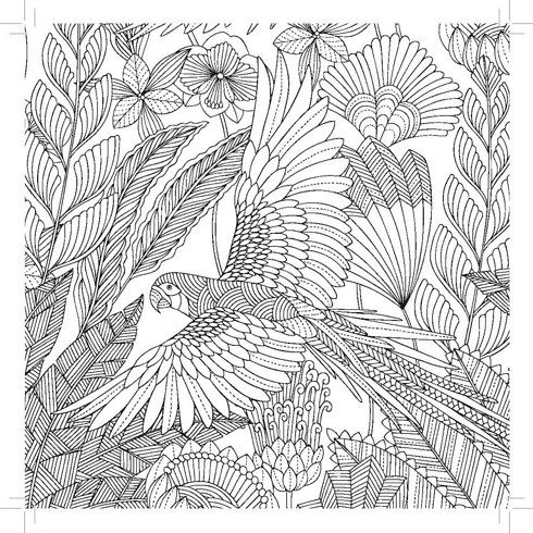 1000 images about ideas on pinterest coloring pages beach