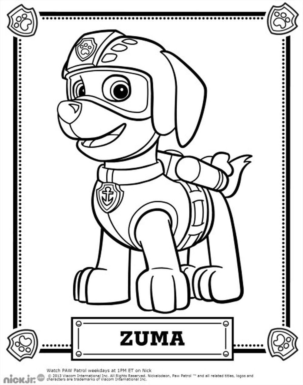 Coloriage Pat Patrouille Zuma 1000×1272 Coloring Pages