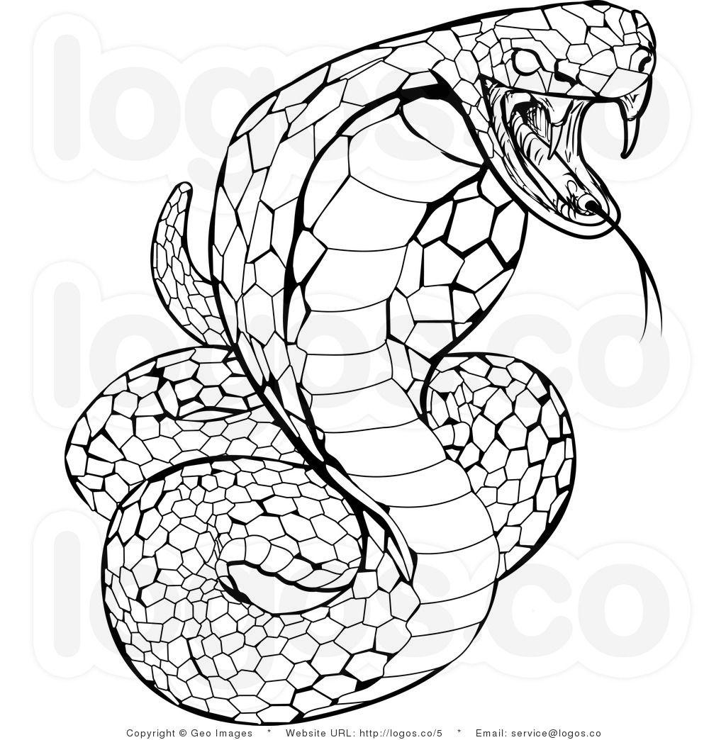 reptiles snakes drawing Leonardo Pinterest Snake