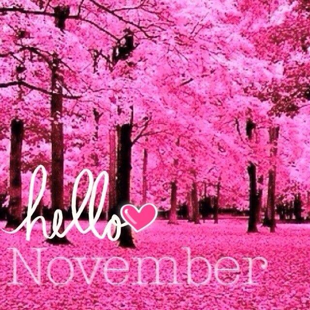 """HELLO NOVEMBER"" FROM http//distilleryimage8.s3"