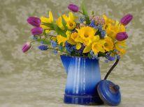 Pildiotsingu spring flowers tulemus
