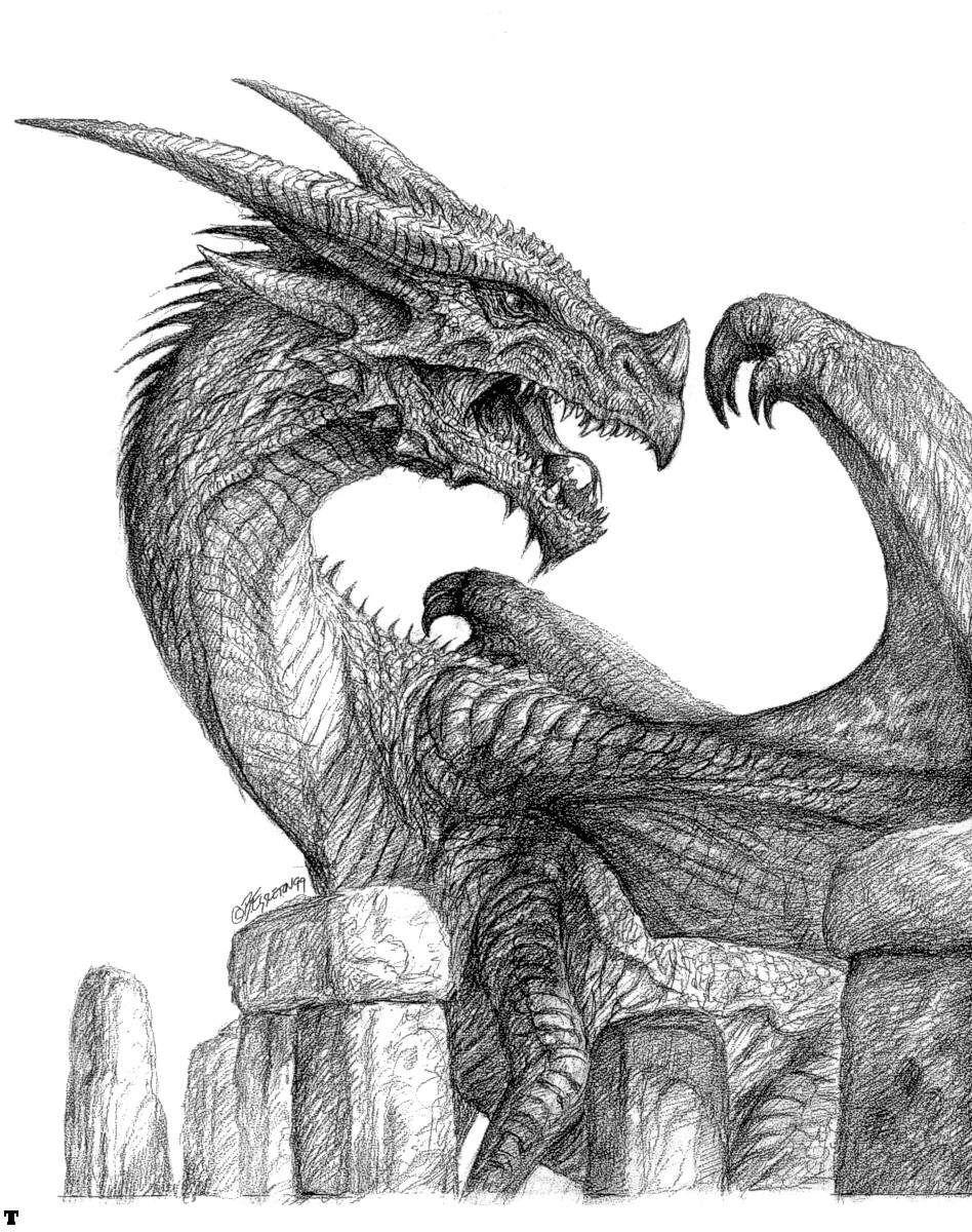 Blank and white dragon art. Fantasy. Medieval Dragon(s